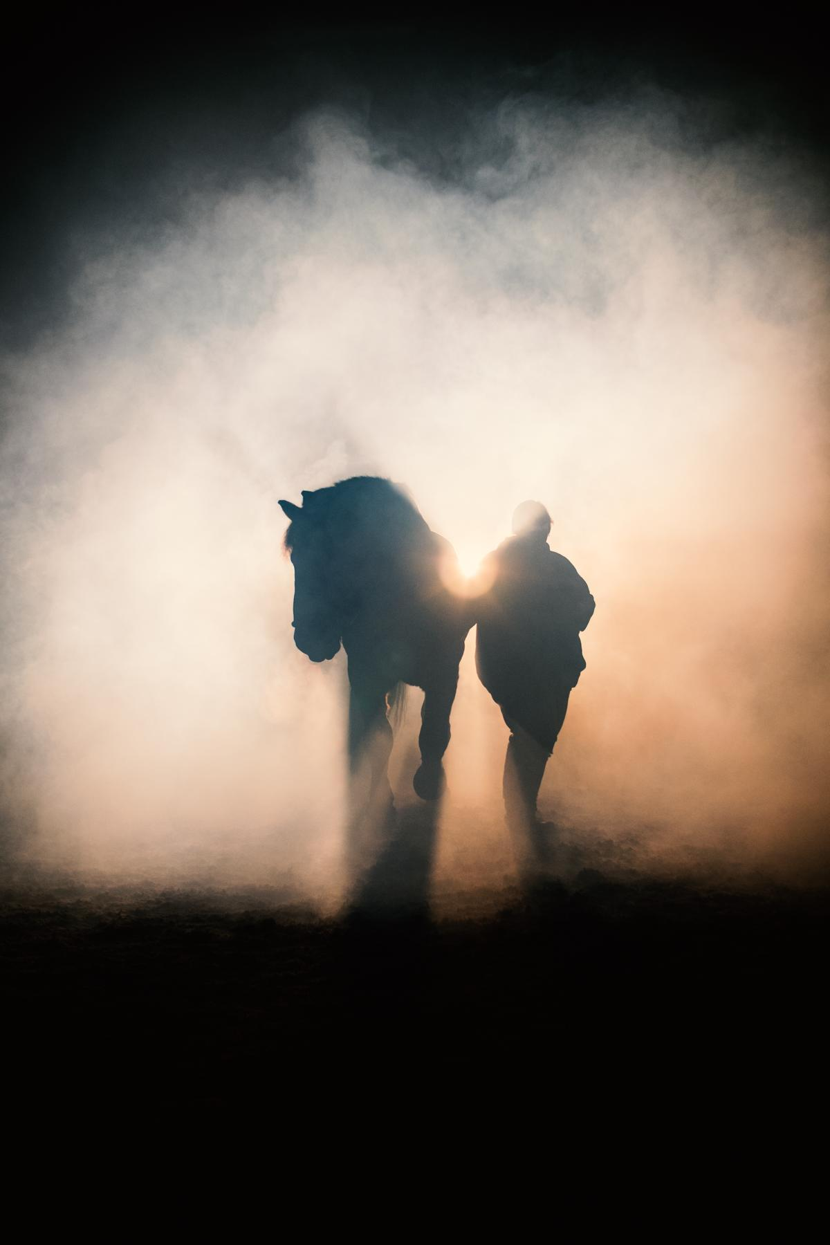 Kaltblut Freundschaft Nebel Dunkelshooting