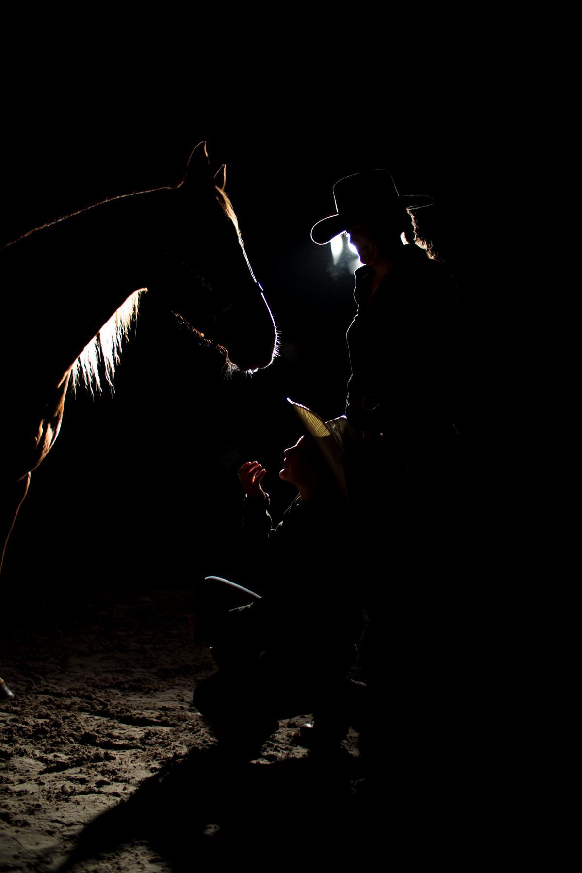 Fuchs Stute Dunkelshooting