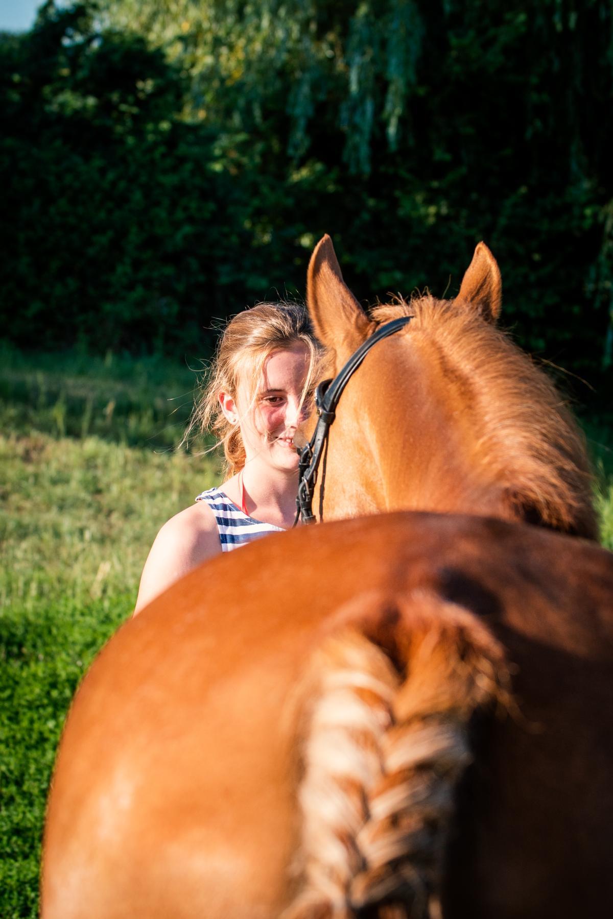 Fuchs Pony Portrait