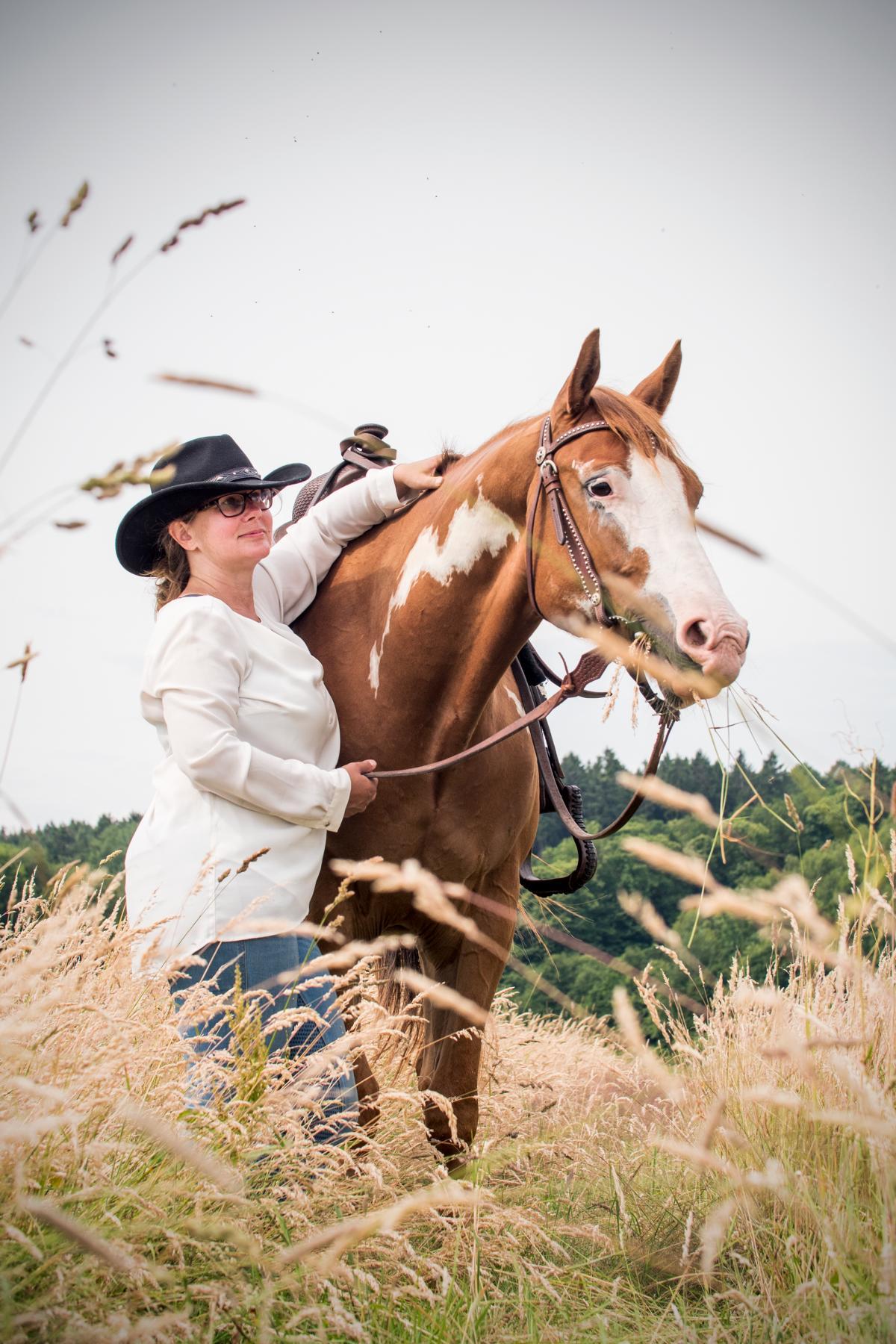 Quarter Horse Sonny Pferdefotos Feld Portrait
